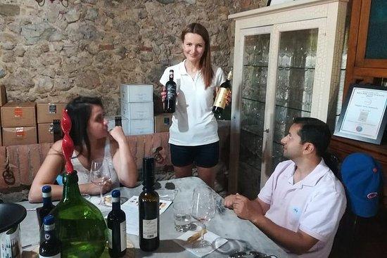 來自羅馬的葡萄酒和奶酪以及EVO Oil Tastings...