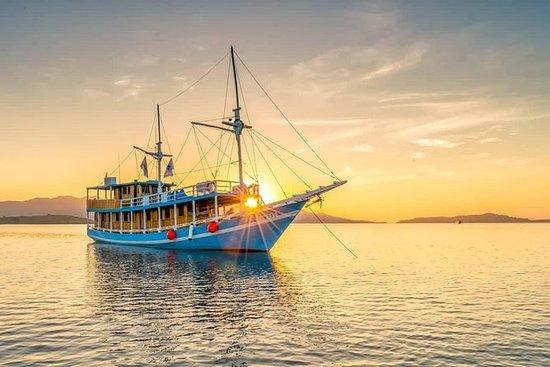 Excursion en bateau privé Komodo 2...