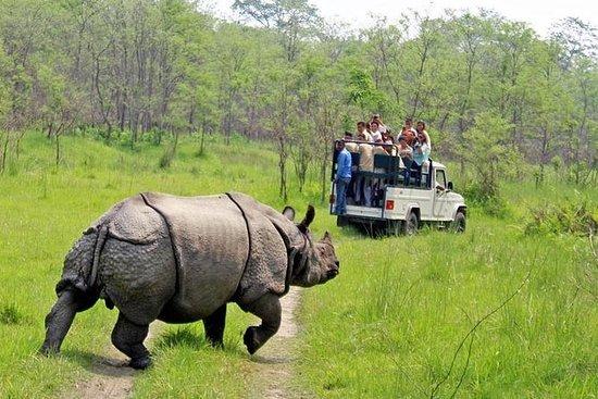 Chitwan Jungle Safari Tour (2 netter...