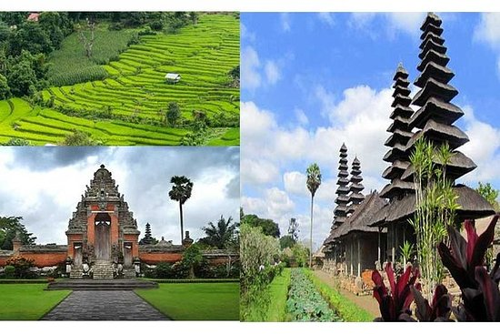 Tour privato: Ubud, Taman Ayun Temple e