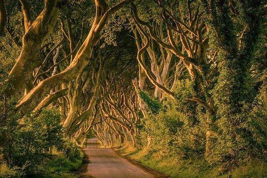 Tour de Il Trono di Spade da Dublino