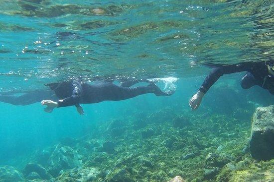 Snorkelen op Gran Canaria!