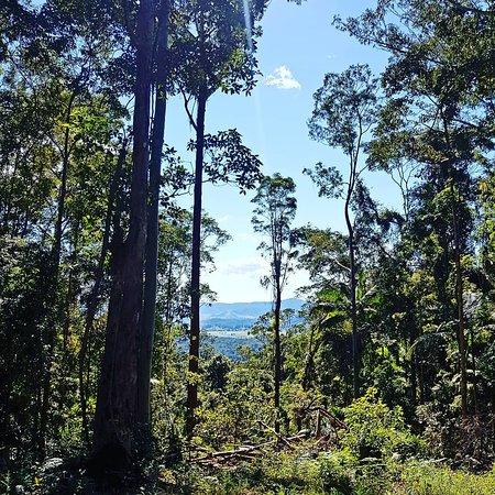 Zdjęcie Moreton Bay Region