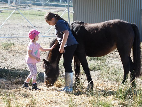 Glenorie, Australia: The girls and their horses