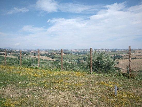 Montecarotto ภาพถ่าย