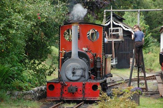 Launceston Steam Railway 2020 All You Need To Know Before You Go With Photos Launceston England Tripadvisor