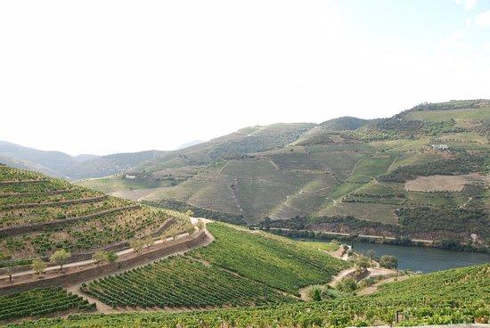 Fotografia de Covas do Douro