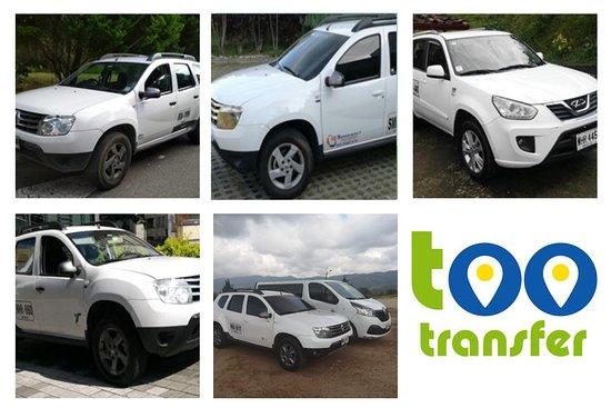Too Transfer