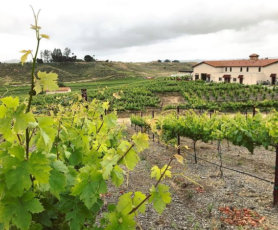 Avensole Winery Temecula 2020 All You Need To Know