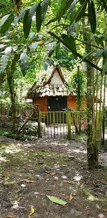 Pance, โคลอมเบีย: Reserva Natural Anahuac