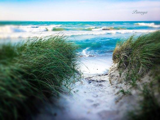 Beach at Wilmette's Gillson Park - Picture of Gillson Park