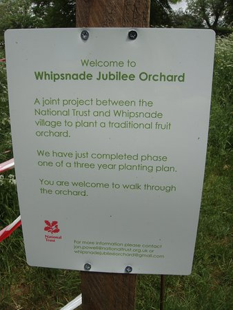 Whipsnade Tree Cathedral Dunstable Tripadvisor
