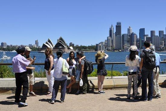 Sydney's Wonders Tours