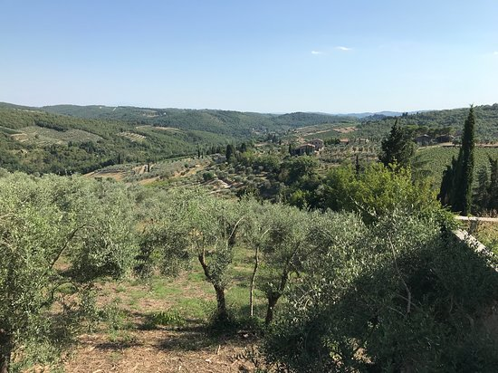 Lecchi in Chianti, Italie : A walk in the Tuscany countryside so relaxing !