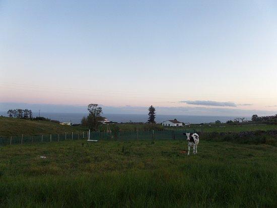 Quinta do Agricultor