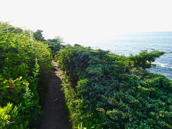 Prouts Neck, เมน: Smoother, Greener, Less Rocky Section of the Cliff Walk