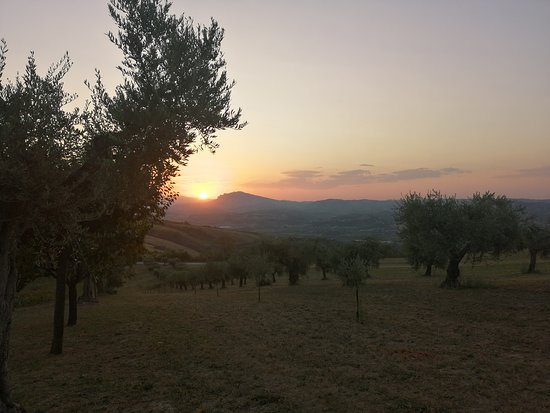 תמונה מControguerra
