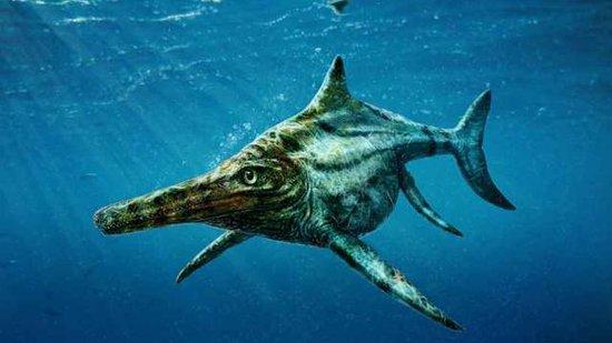 Prads-Haute-Bleone, Frankrike: Ichtyosaure de La Mélaie 1 sur 2. Représentation Imagée Agressive de ce Reptile Marin  de 4 Mètres de Long, au Sang Chaud, Âgé de 107 Millions d'Années.