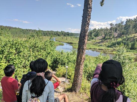 McGillivray Falls Self-guiding Trail: high view