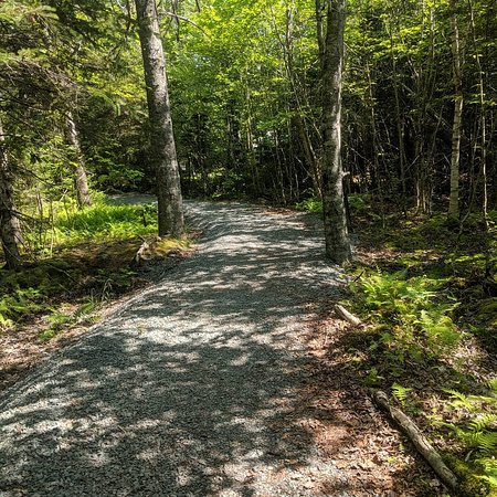 Dollar Lake Provincial Park (Wyses Corner) - 2020 All You Need to Know BEFORE You Go (with