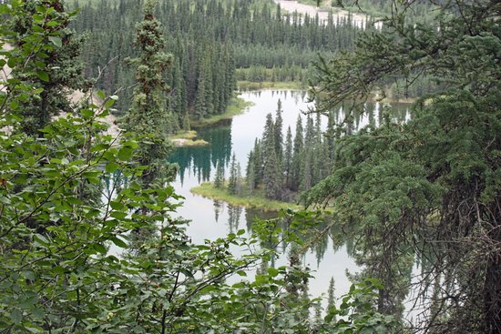 Horseshoe Lake Trail: View from the top of the hill!