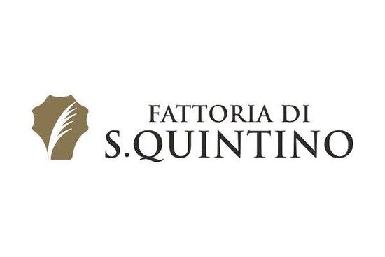 Fattoria di San Quintino