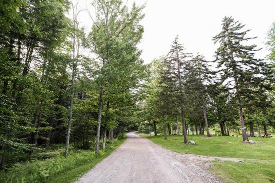 Edson Hill Road