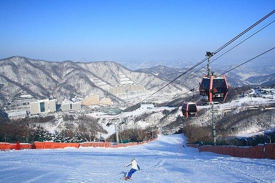 En dag Vivaldi Ski Resort Tour med Nami...