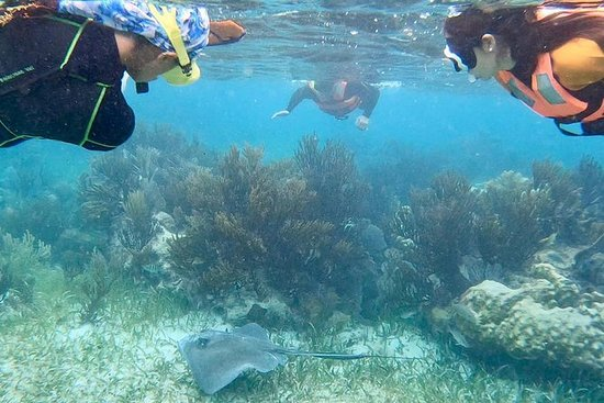 Snorkeling & Bike Tour in Puerto Morelos From Cancun and Playa del carmen