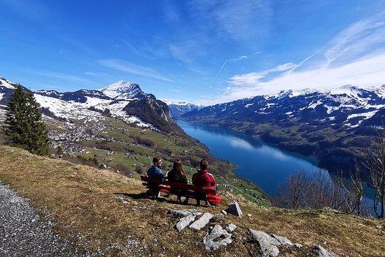 Van Zürich: Adembenemende waterval en ...