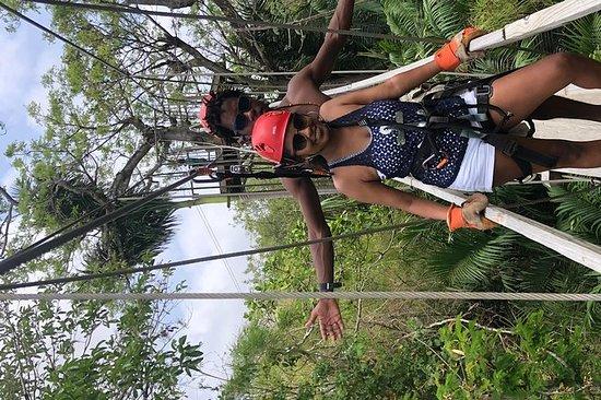 Zipline privado y experiencia de santuario de babuinos: PRIVATE Zipline & Baboon Sanctuary Experience