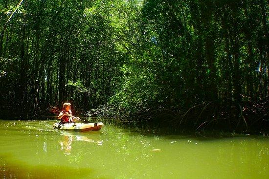 4 Experiencias de Kayak pagan 1...