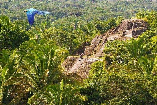 Belize: Se og gjør det hele om 10...