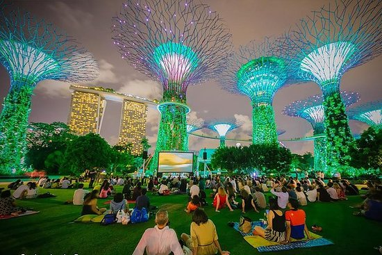 Singapore Night Tour med Gardens By...