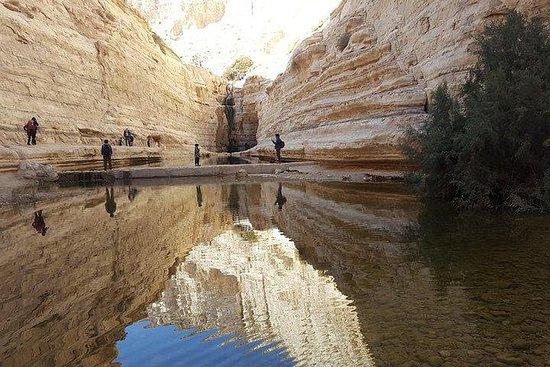 Nel tour del deserto
