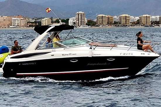 乘船,海豚瞄准,饮料包括在船上