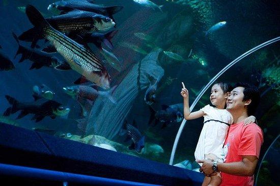 Underwater World Pattaya (Biglietto