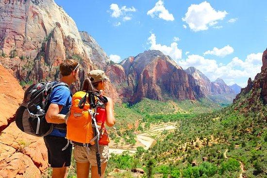 Zion National Park Luxus-Bustour