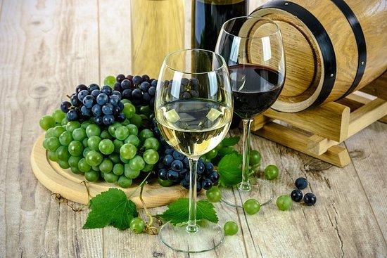 參觀埃特納火山和葡萄酒品嚐會