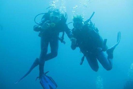 Tour de Mergulho em Galápagos...