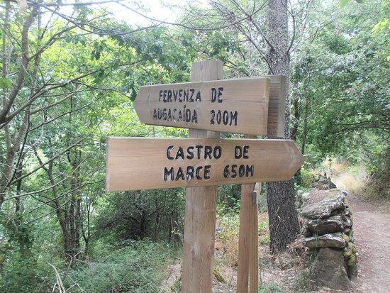 Pantón, España: Además de la cascada, también puedes acercarte al casto de Marce.