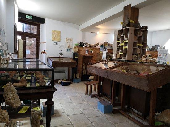 Musee de mineralogie et Paleontologie