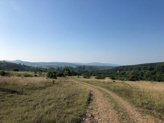 Balatonhenye, المجر: Balatonhenye