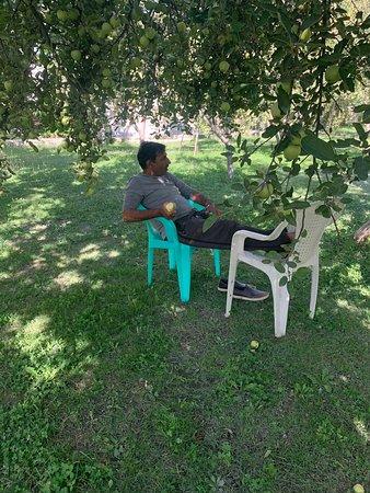 Minapin, Pakistán: Enjoying fruit garden and Rakaposhi view