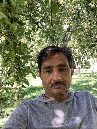 Hotel Diran Guest House (DGH), Minapin Nagar, Gilgit-Pakistan