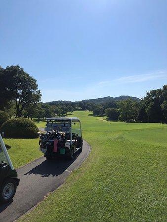 ゴルフ クラブ ウッド レイク