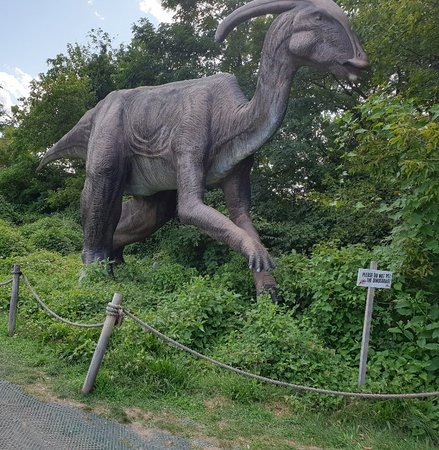 Field Station: Dinosaurs (Leonia) - 2019 All You Need to