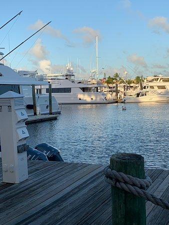 Sunrise - Picture of Ocean Reef Club, Key Largo - TripAdvisor