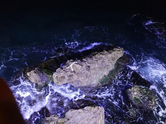 Ayla Beach