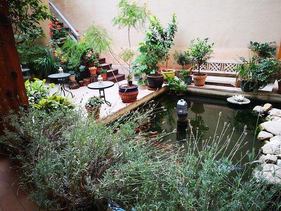 Ateca, Hiszpania: Estanque patio interior